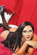 Roma Transex Luana Fernandes 324 60 46 310 foto 10
