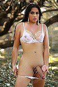 Frosinone Trans Escort Camila Bambola 329 70 99 256 foto hot 2