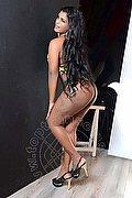 Vercelli Transex Tatiana Ferraz 320 14 16 048 foto 4