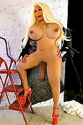 Reggio Emilia Transex Top Star Trans 389 61 97 950 foto hot 28