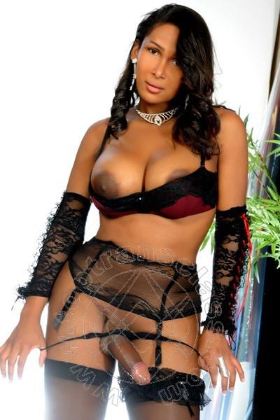 Hot Sextrans 114