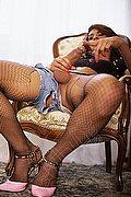 Bologna Transex Morena Esagerata 347 98 93 686 foto hot 1